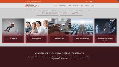 Cabinet Propulse - Coaching dirigeant entreprise Tours 37